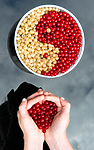 BB_20160807_0011 / Ribes rubrum / Hagerips