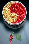BB_20160807_0020 / Ribes rubrum / Hagerips