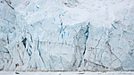 KA_140613_4135 / Ursus maritimus / Isbjørn