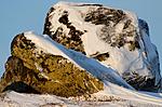 _SRE2005 / Lagopus muta / Fjellrype