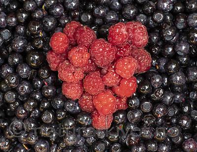 BB_20200711_0017 / Rubus idaeus / Bringebær <br /> Vaccinium myrtillus / Blåbær
