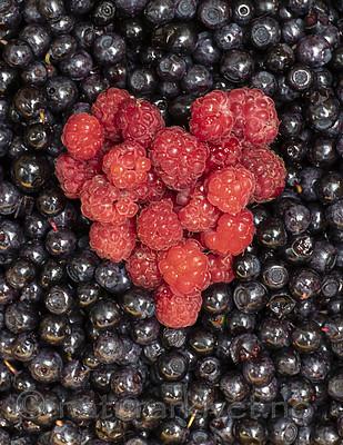 BB_20200711_0018 / Rubus idaeus / Bringebær <br /> Vaccinium myrtillus / Blåbær